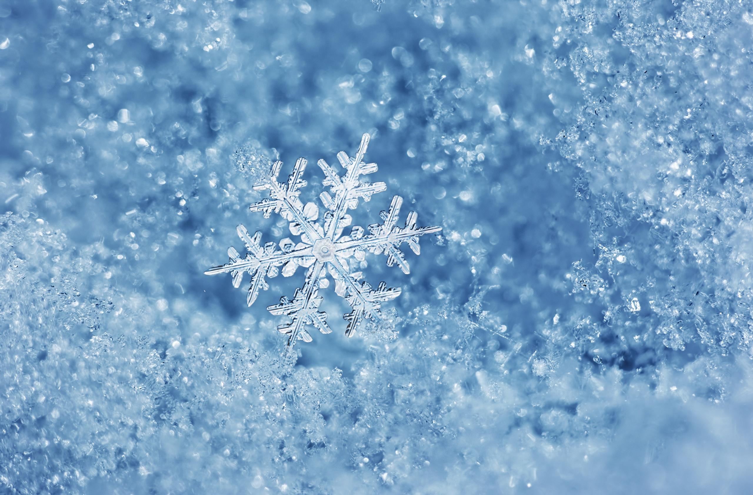 Специфические снежинки из бумаги