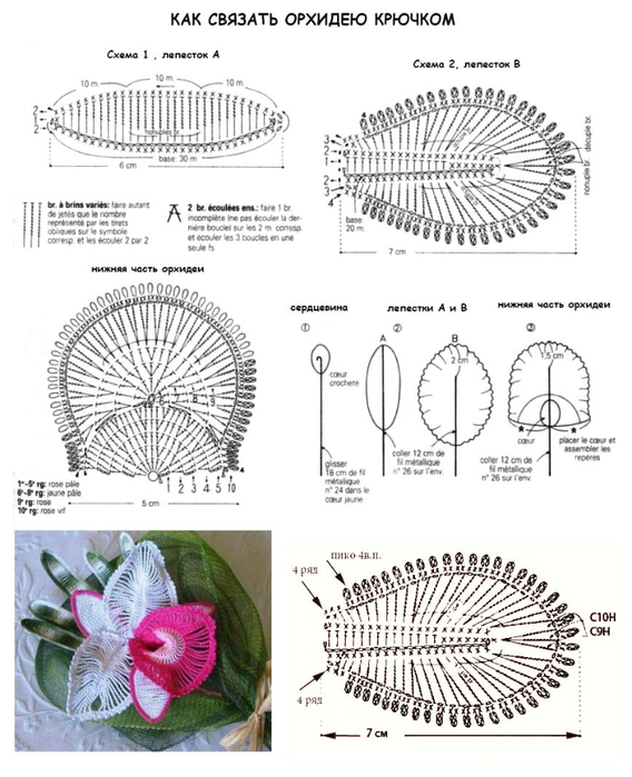 Ажурная лилия