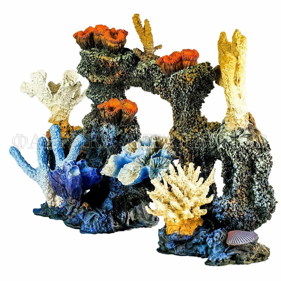 Коралл — подарок из морских глубин