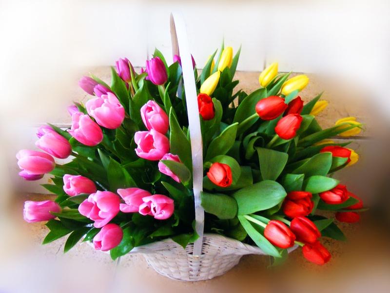 8 марта в каких странах отмечают международный женский день