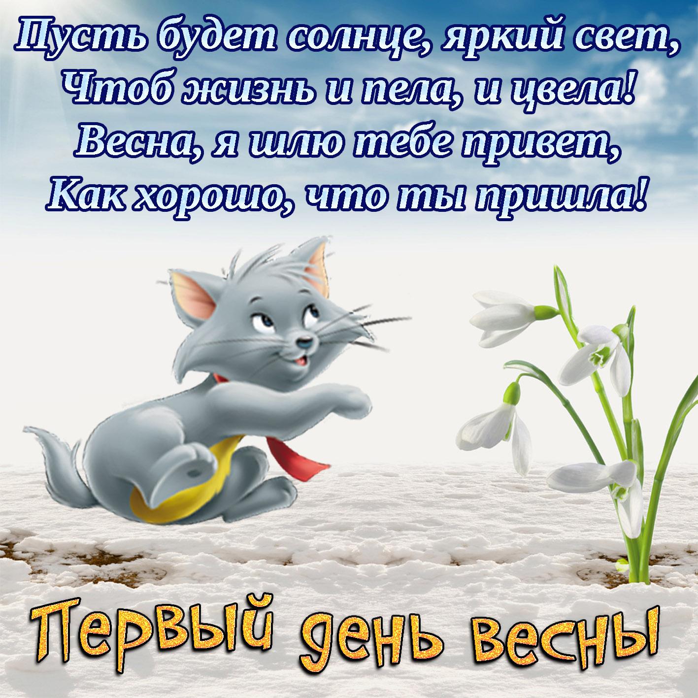 Поздравления с первым днем весны ᐈ приметы на 1 марта - новости на kp.ua