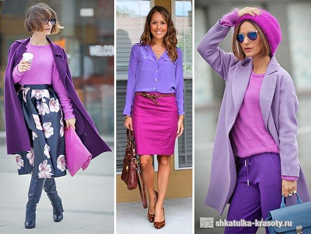 Цветок с фиолетовыми цветами: названия, фото, уход