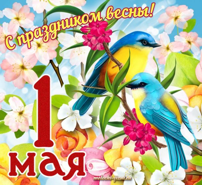 Поздравление с 1 мая (мир труд май) в стихах, прозе и своими словами