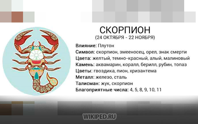 Знак зодиака скорпион ♏ | даты, характеристика, совместимость, талисманы