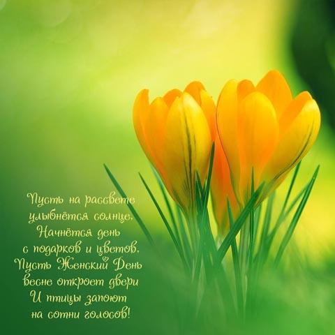 """Лучшие поздравления любимой маме с 8 марта в стихах поздравления маме с 8 марта в стихах — детский развивающий сайт """"xkid"""""""