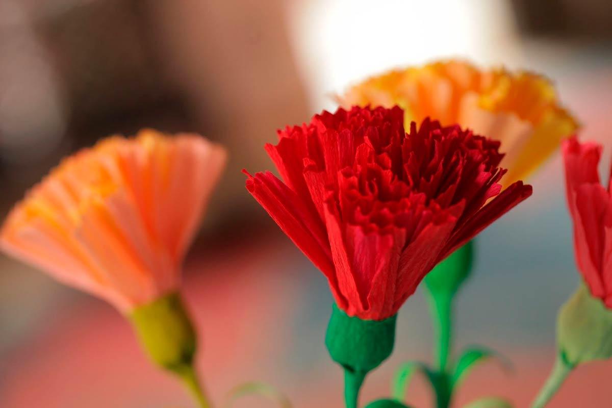 Как сделать гвоздику своими руками: мастер класс цветка из гофрированной бумаги, фетра, изолона и салфеток | все о рукоделии