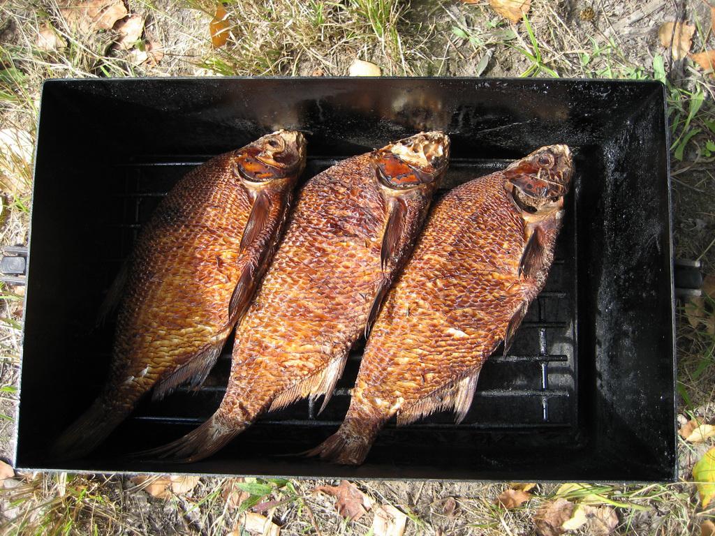 Как коптить рыбу в коптильне горячего копчения: рецепты, как подготовить к приготовлению