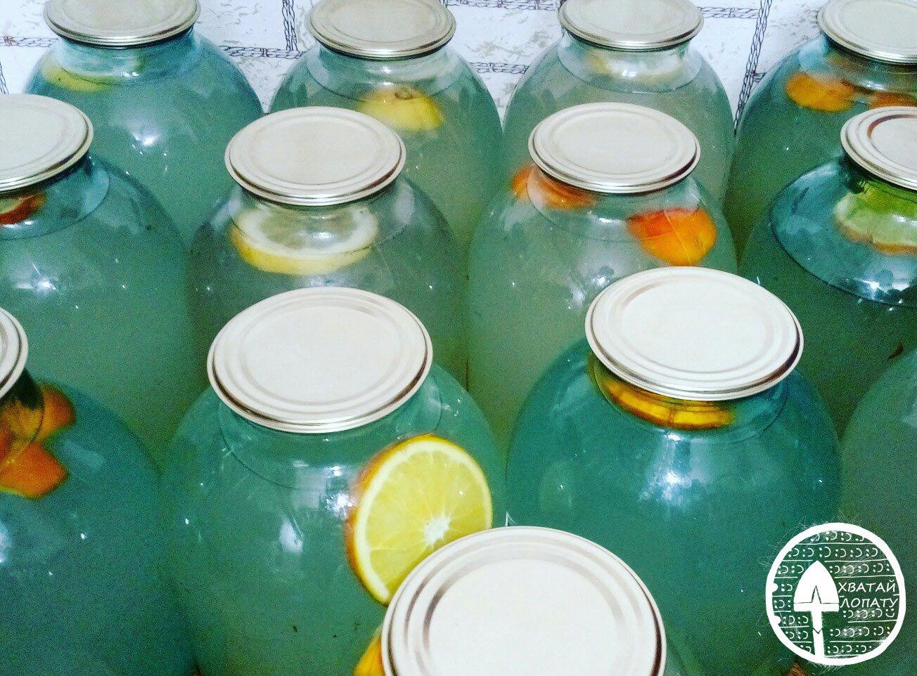 Как правильно закатывать березовый сок? заготовка березового сока на зиму