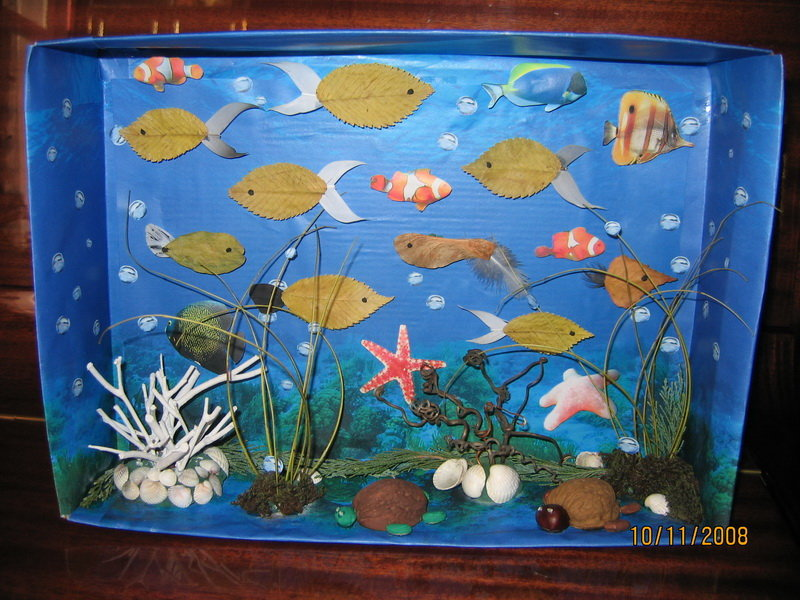 Аквариумы своими руками, макеты аквариумов в уголок природы