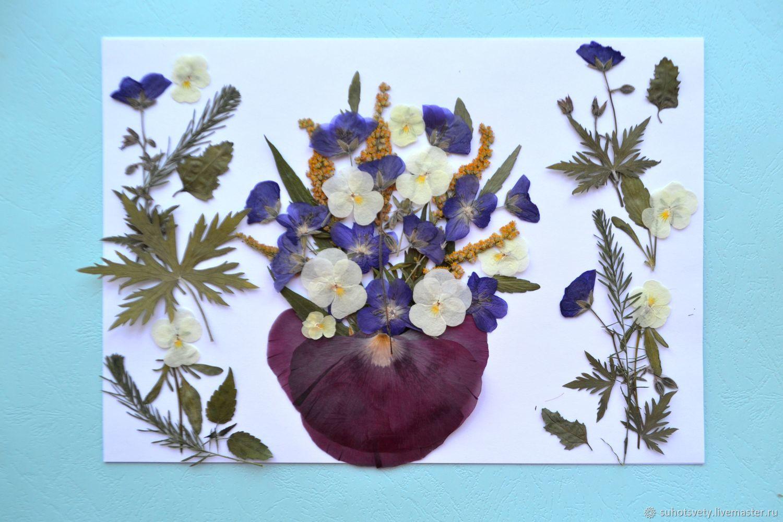 Гербарий — красота, неподвластная времени. как сделать гербарий своими руками? фото — ботаничка.ru