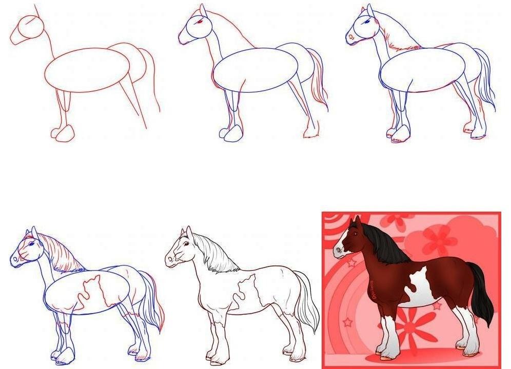 Как нарисовать лошадь в полный рост  поэтапно 3 урока