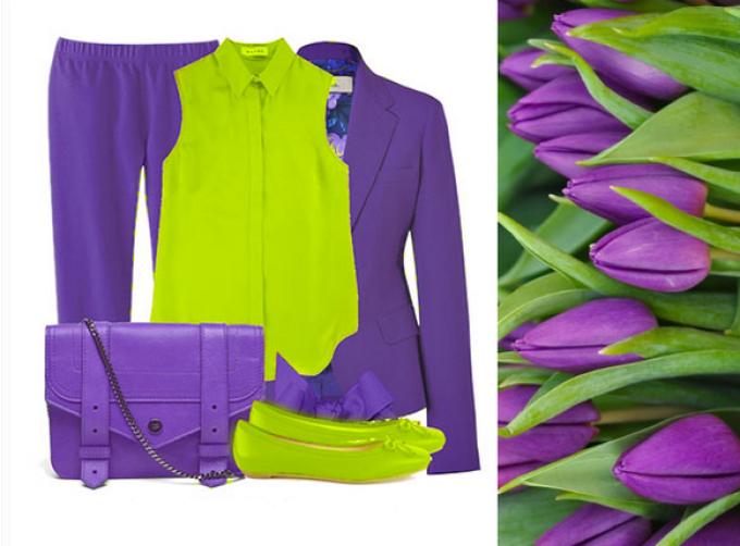 Домашние и садовые фиолетовые цветы – палитра декоратора