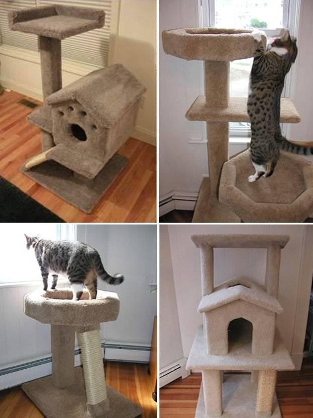 Домик для кошки своими руками из картонной коробки — идеи и инструкции с фото