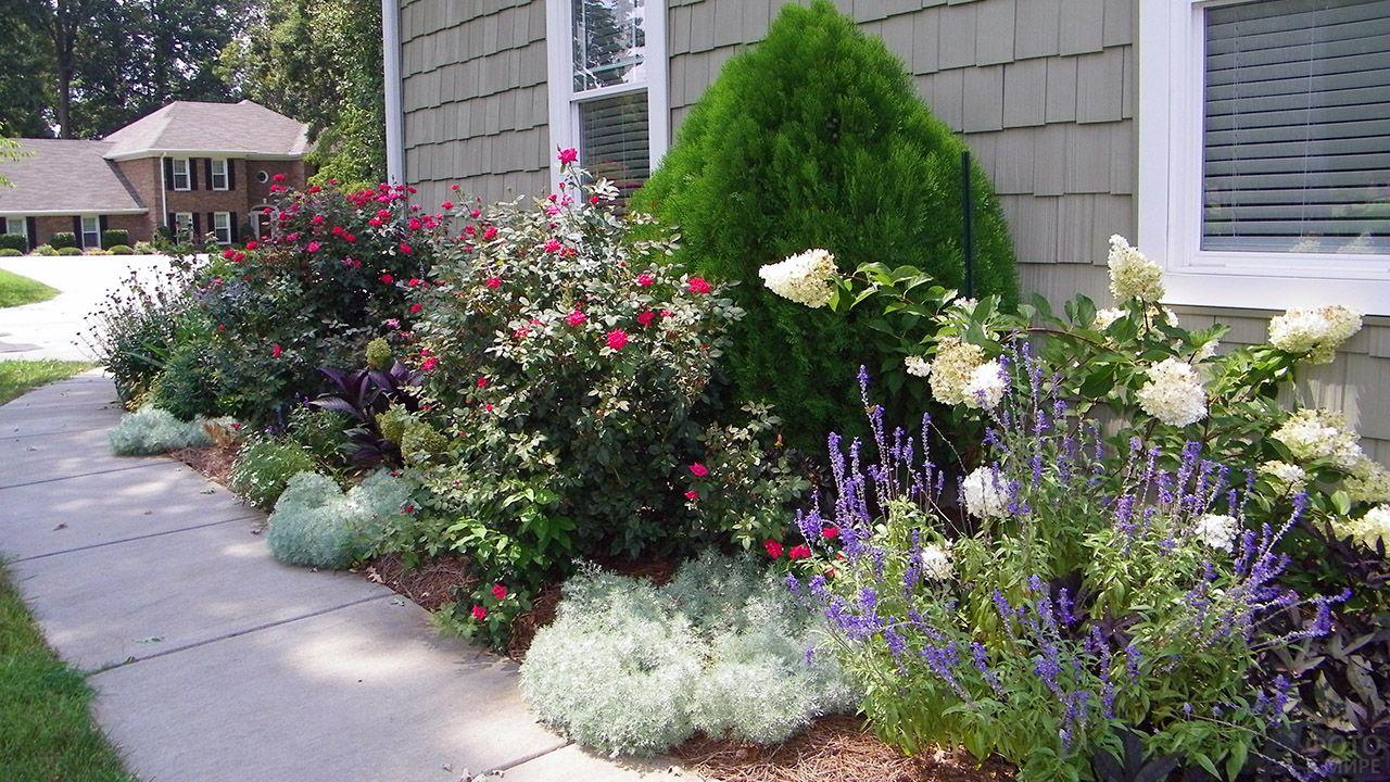 Многоярусная клумба: интересные варианты оформления цветника