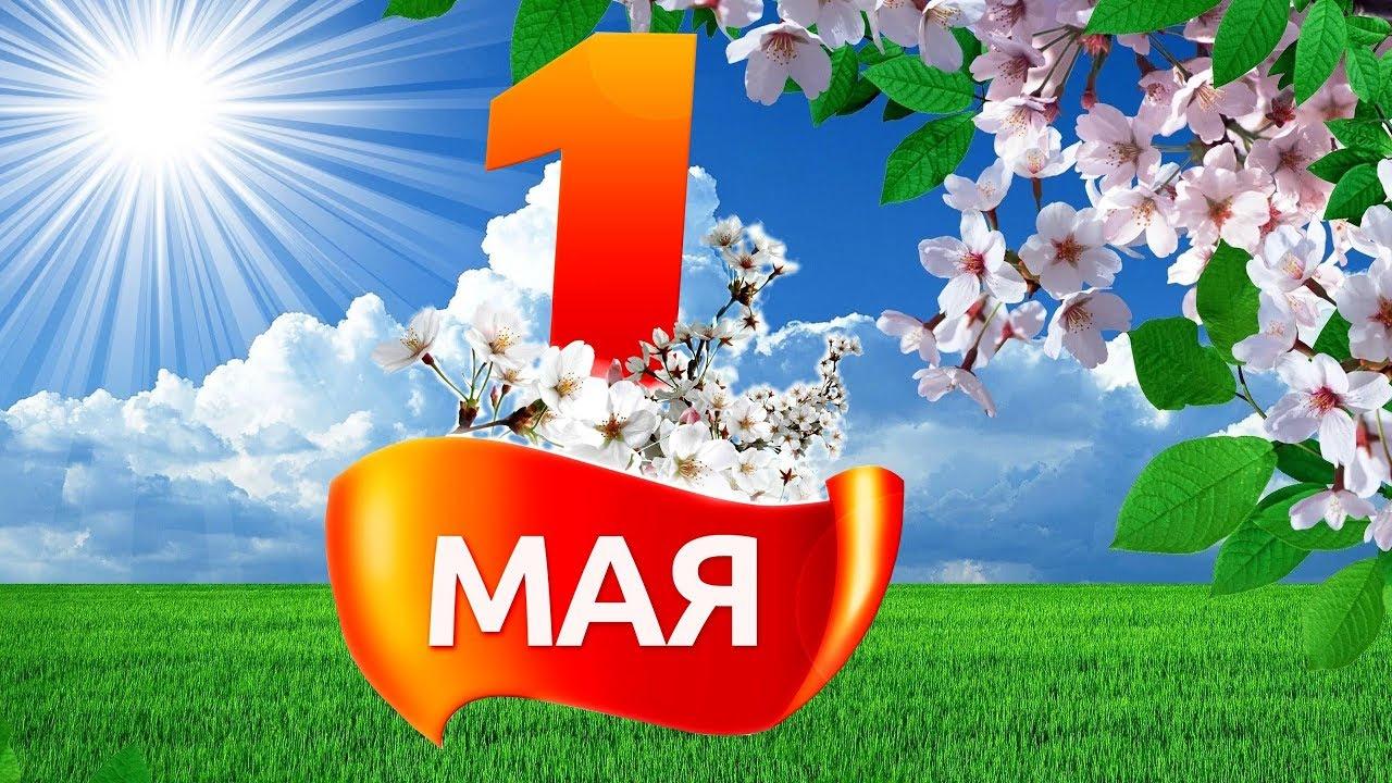 Официальные поздравления с 1 мая от руководителей