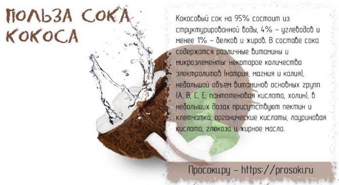 Кокосовое масло: применение, польза и вред, состав и калорийность