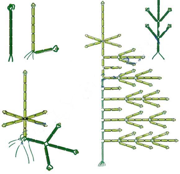 Елка из бисера: мастер-класс плетения елочки по схемам своими руками для начинающих, советы мастеров