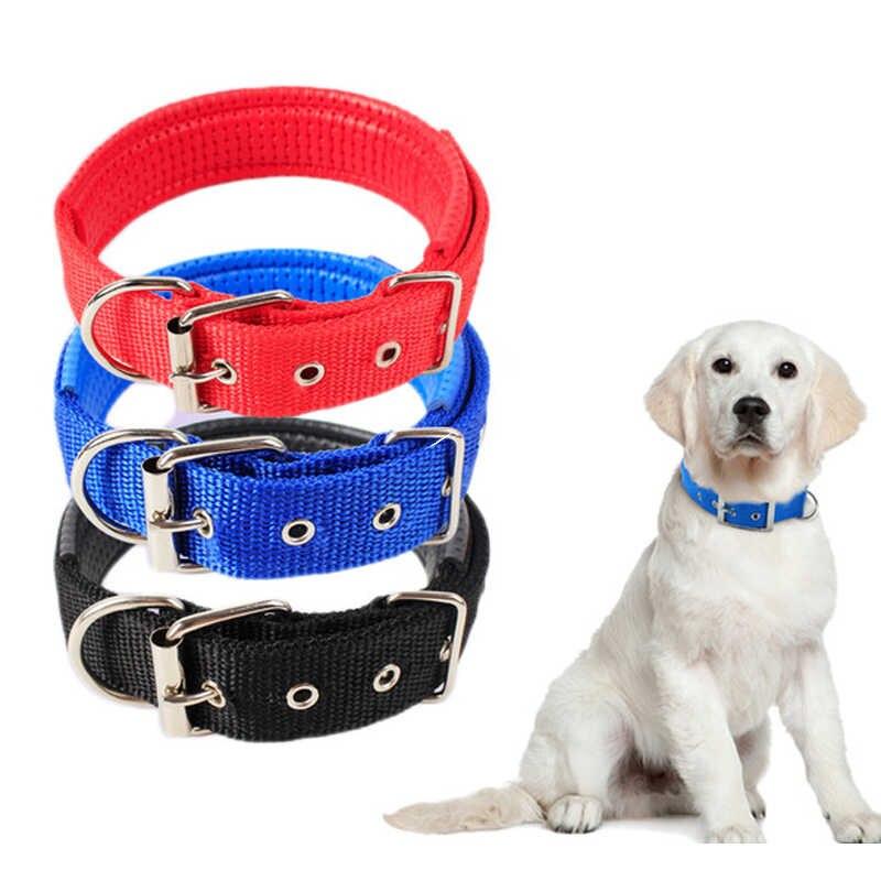 Ошейник для собак и щенков: виды, как выбрать