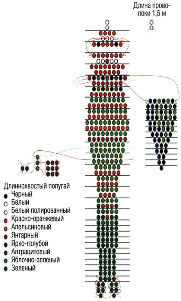Как кормить колибри: 12 шагов (с иллюстрациями)