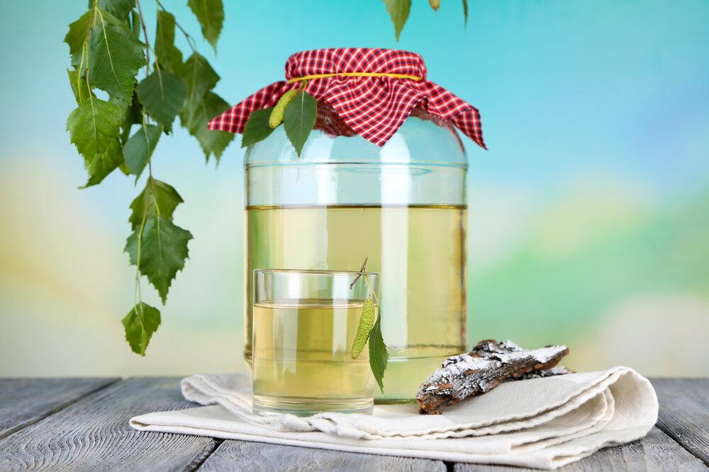 Березовый сок рецепт приготовления с фото