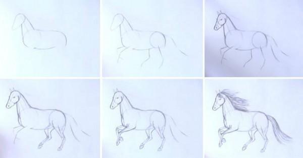 Как нарисовать лошадь карандашом?