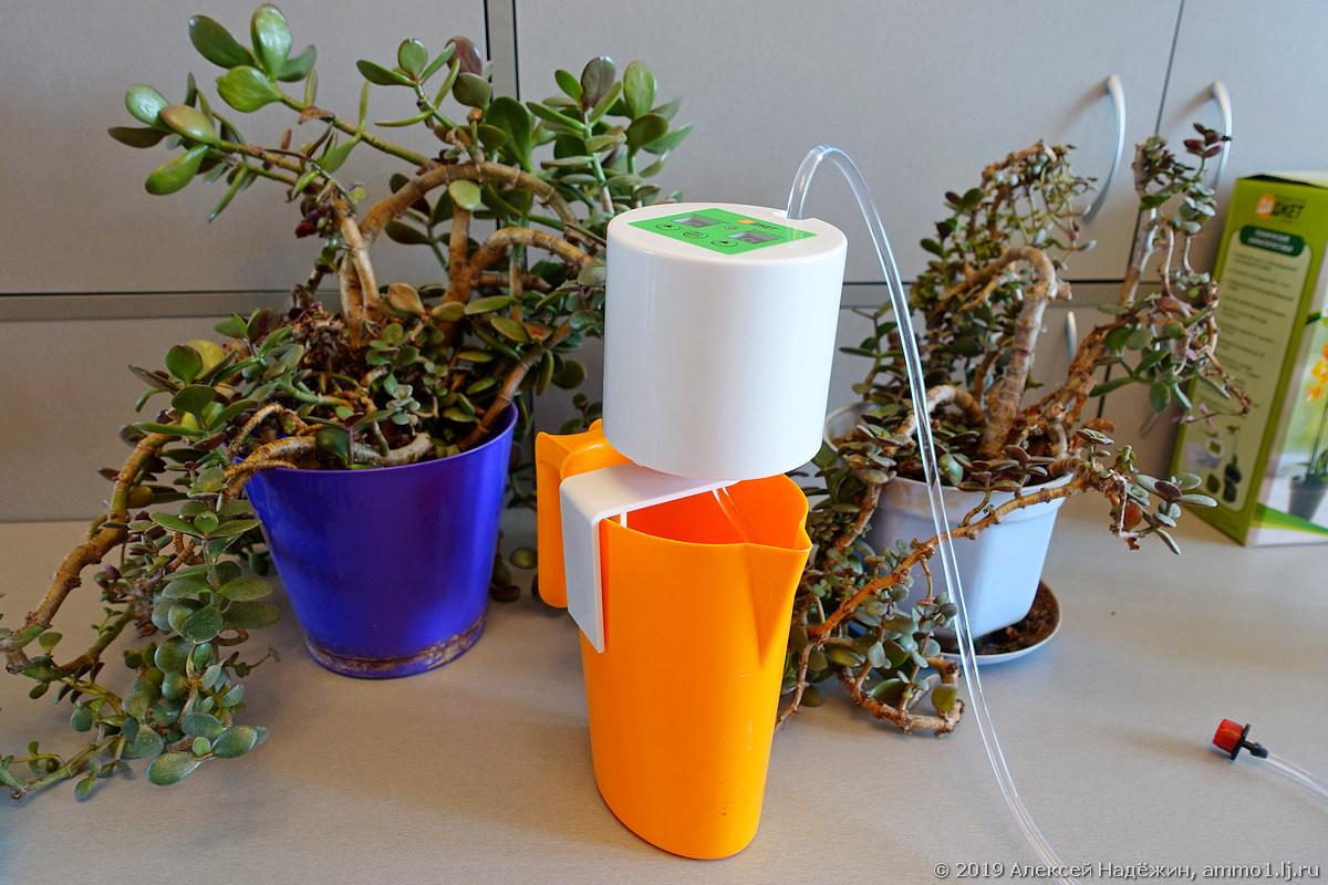 Как сделать капельный полив для комнатных растений своими руками?