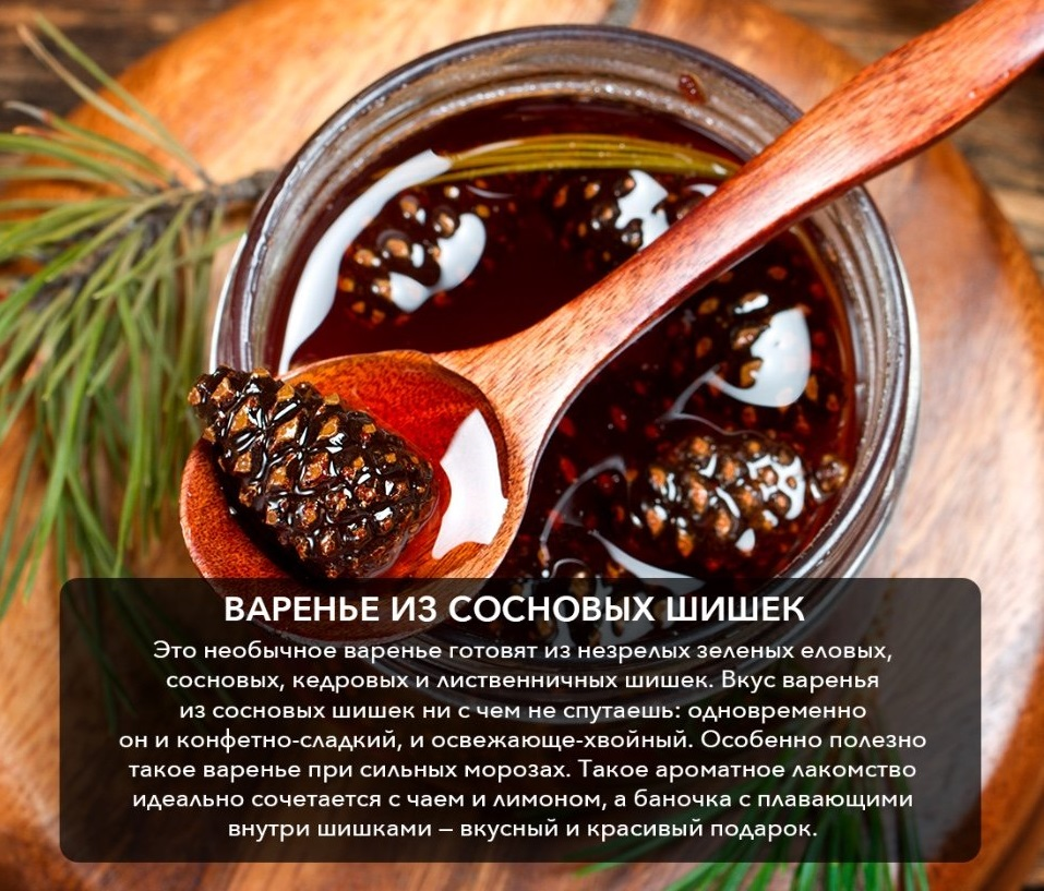 Как приготовить варенье из сосновых шишек в домашних условиях - пошаговый рецепт
