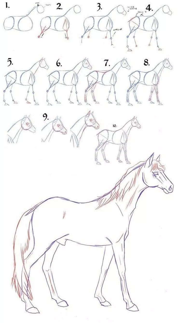 Как нарисовать лошадь поэтапно карандашом: уроки для детей