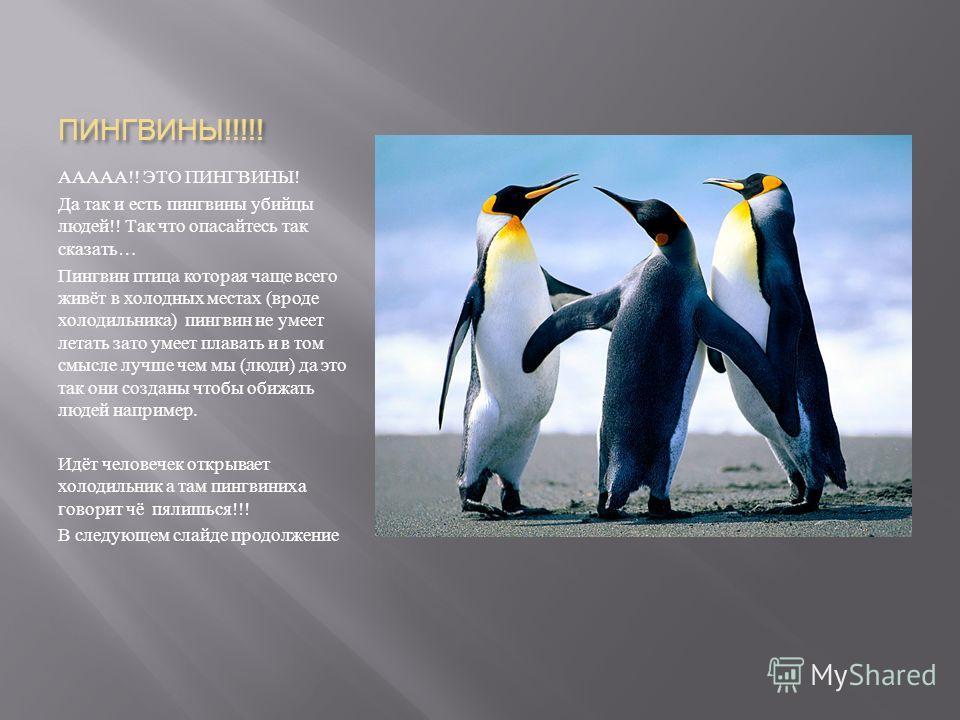 Пингвин - 111 фото нелетающей но отлично плавающей птицы