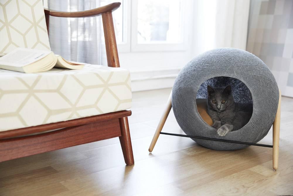 Домик для кошки своими руками - 81 фото идея