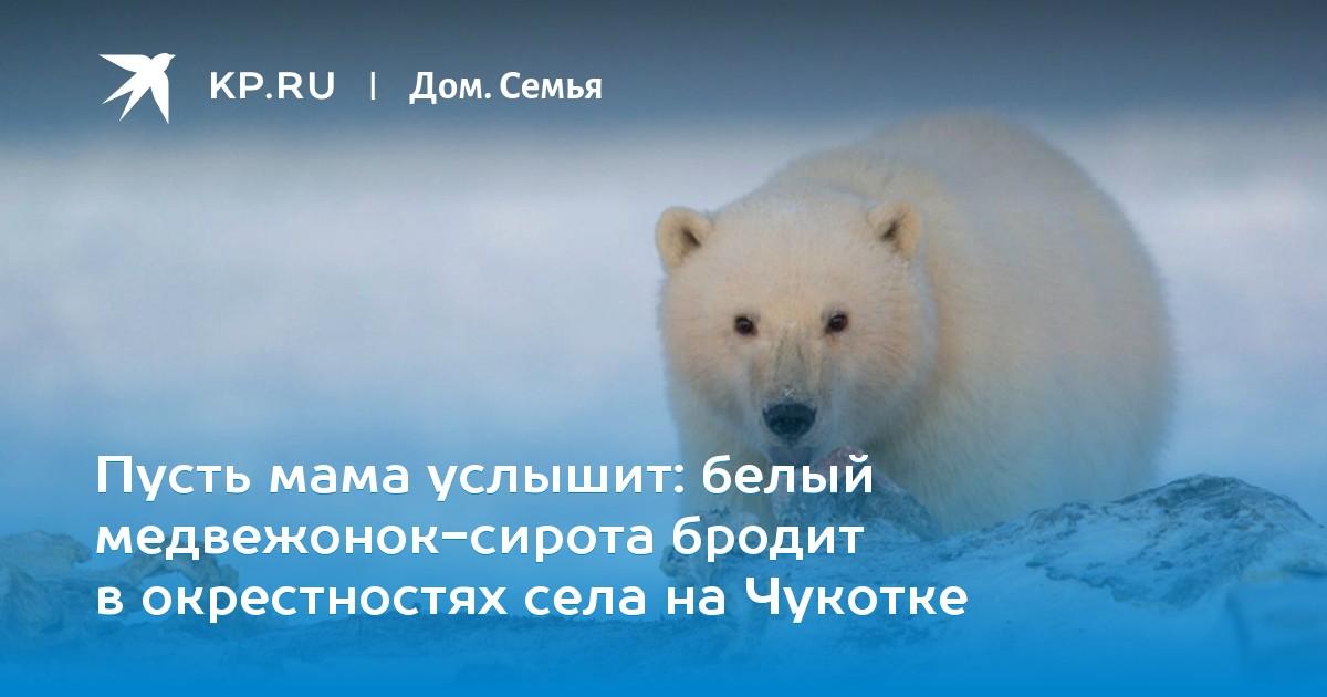 """Как правильно пишется слово """"медвежонок"""" или """"медвеженок""""?"""