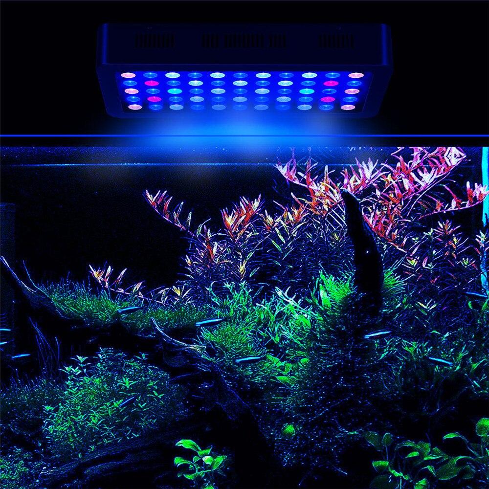 Как установить лампу в аквариум