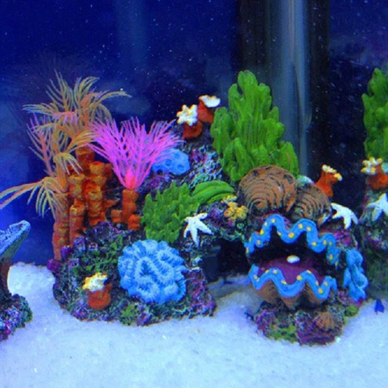 Кораллы для аквариума (23 фото): живые и искусственные кораллы, варианты оформления аквариума своими руками