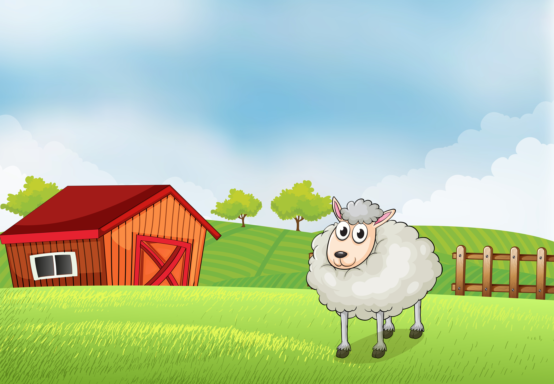 Дом овечек | one piece wiki | fandom
