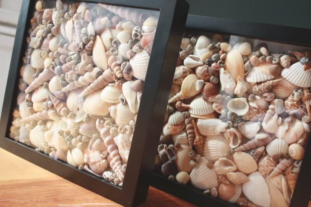 6 идей как использовать коралл в качестве декора квартиры