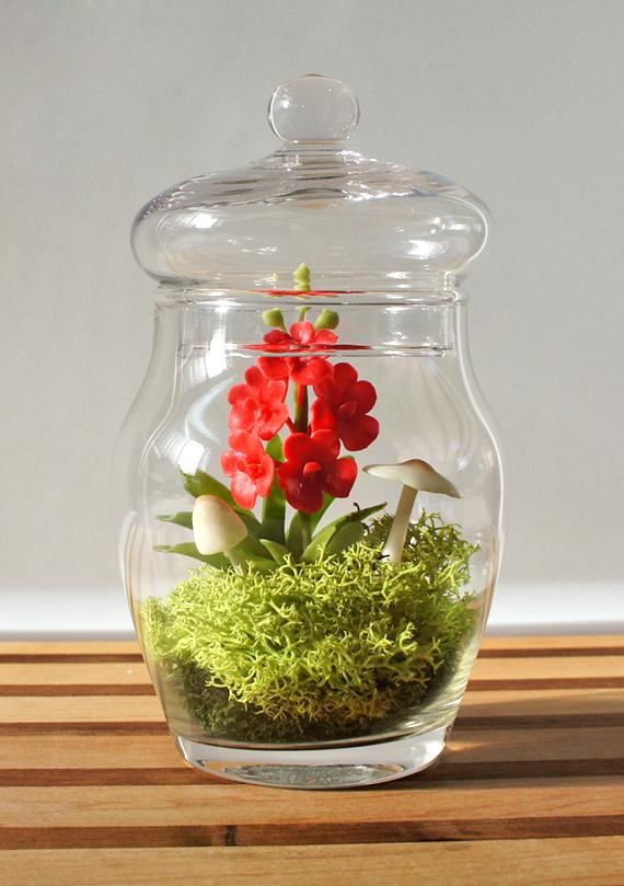 Создание потрясающих композиций в доме: флорариум своими руками для начинающих