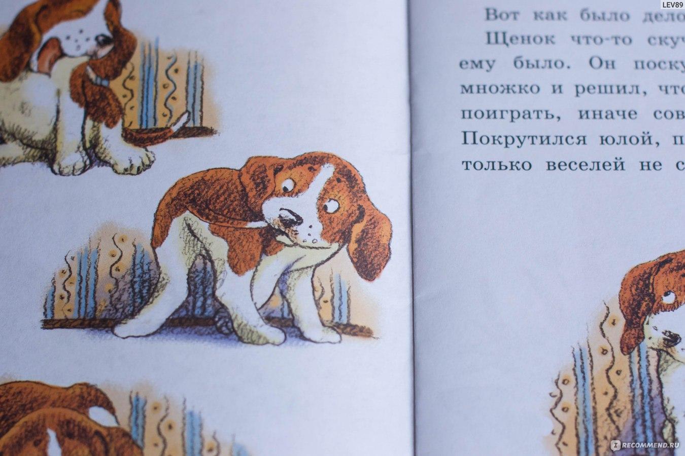 Сказки-несказки: сова - сказки бианки: читать с картинками, иллюстрациями - сказка dy9.ru