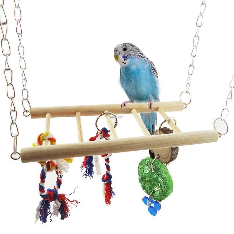 Как выбрать и изготовить игрушки для попугая