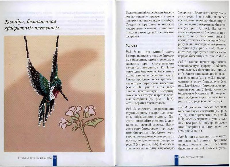 Колибри: описание, как выглядит, где живет, видео, фото и много другое