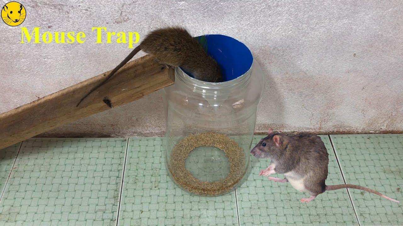 Купить rat&mouse, 1 шт мышеловка деревянная