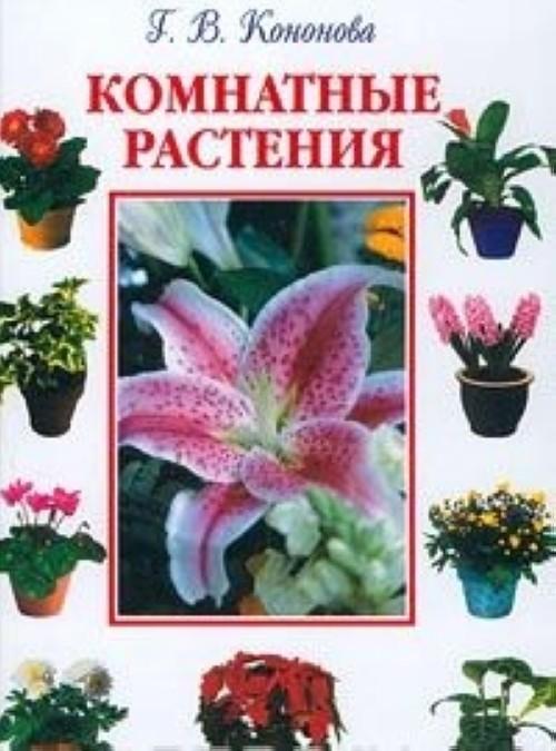 Эухарис - изящный цветок   комнатные цветы и уход за ними