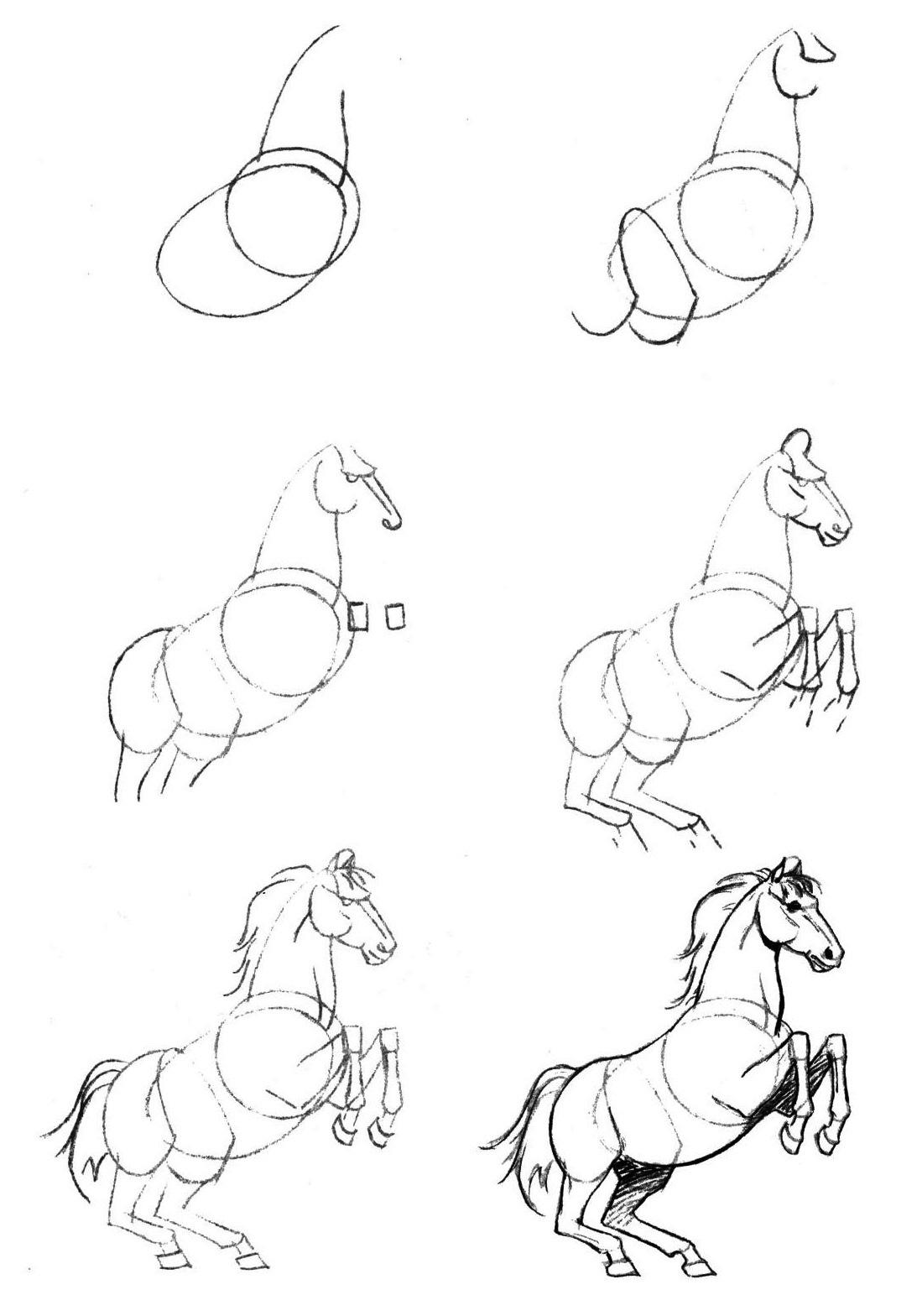 Как нарисовать коня карандашом поэтапно - уроки рисования - полезное на artsphera