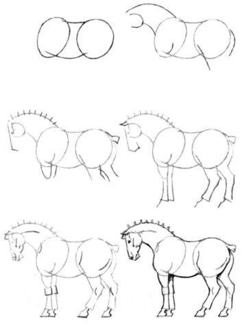 Как рисовать животных: лошади, их анатомия и позы