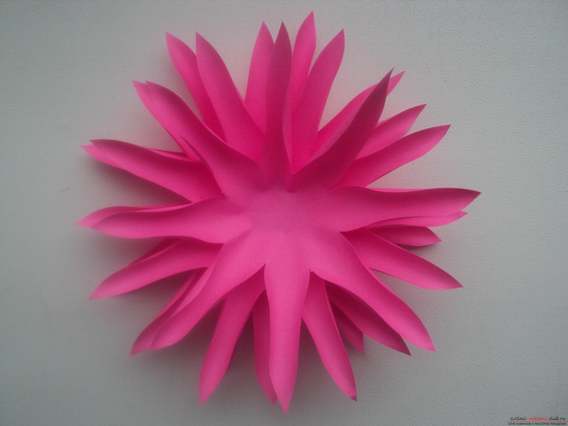 Красивые объёмные цветы из бумаги. каллы — стильные цветы из бумаги своими руками. георгин из бумаги
