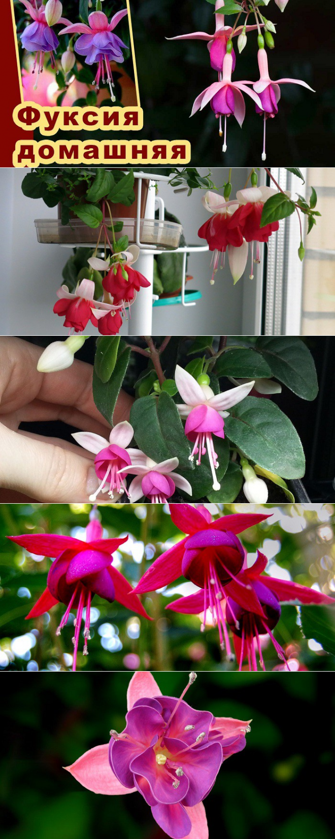 Сережки «Цветы»