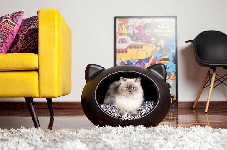 Домик для кошки своими руками: 59 фото и подробного описания лучших вариантов