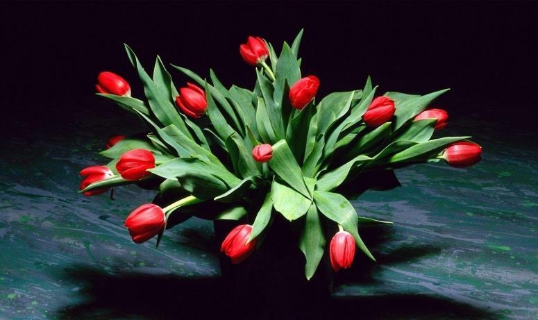 Прикольные поздравления с 8 марта: смс короткие и красивые пожелания в стихах