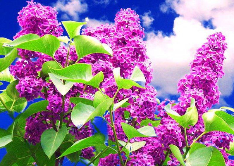 Стихи про весну. март, апрель, май. весенние стихи