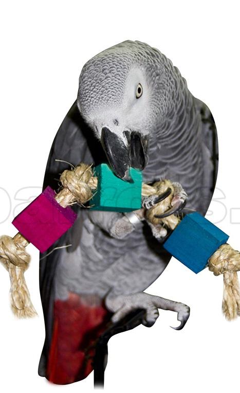 (обновлено) игрушки для попугаев: волнистых и неразлучников, крупных, средних и маленьких, как выбрать и можно ли сделать своими руками