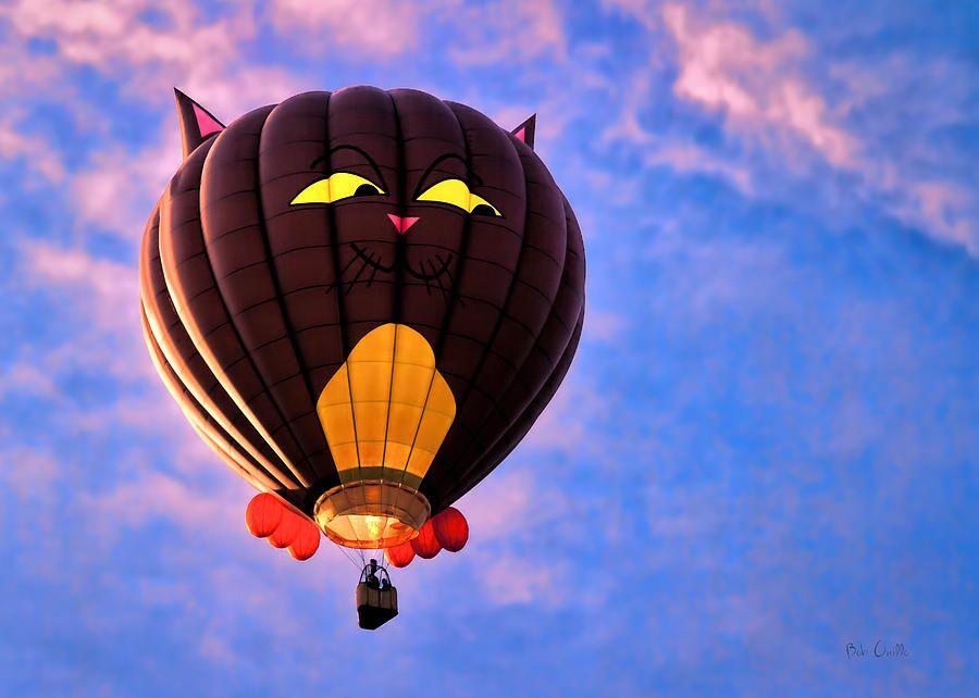 Каким образом осуществляется управление воздушным шаром? | прогресс онлайн